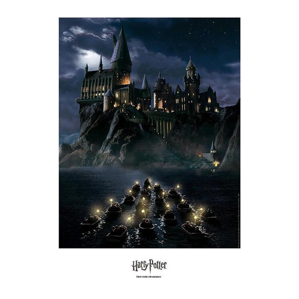 Harry Potter Artprint Edizione Limitata 50x40 Hogwarts